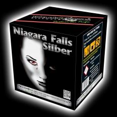 Niagara Falls Silber